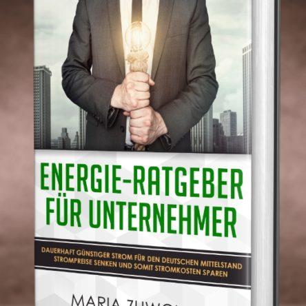 Energie-Ratgeber für mittelständische Unternehmer