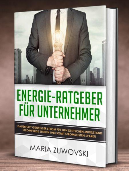 Cover Energie-Ratgeber für Unternehmer